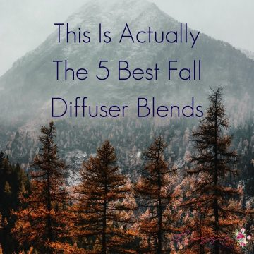 This Is Actually The 5 Best Fall Diffuser Blends